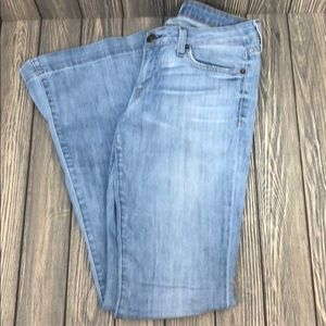 Hudson Slight Distressed Wide Leg Blue Jean